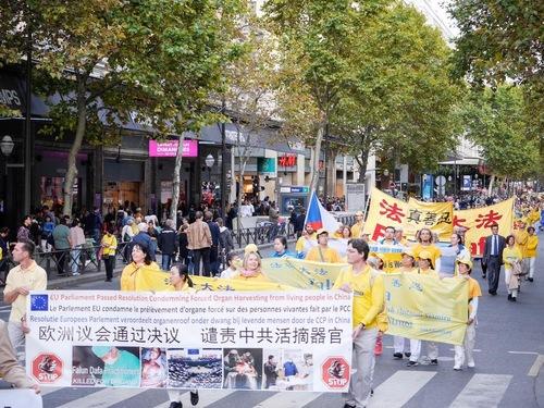 Плакати з інформацією про насильницьке видаляння органів у живих практикуючих Фалуньгун в Китаї