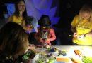 Практикуючі Фалунь Дафа взяли участь у виставці Samskara