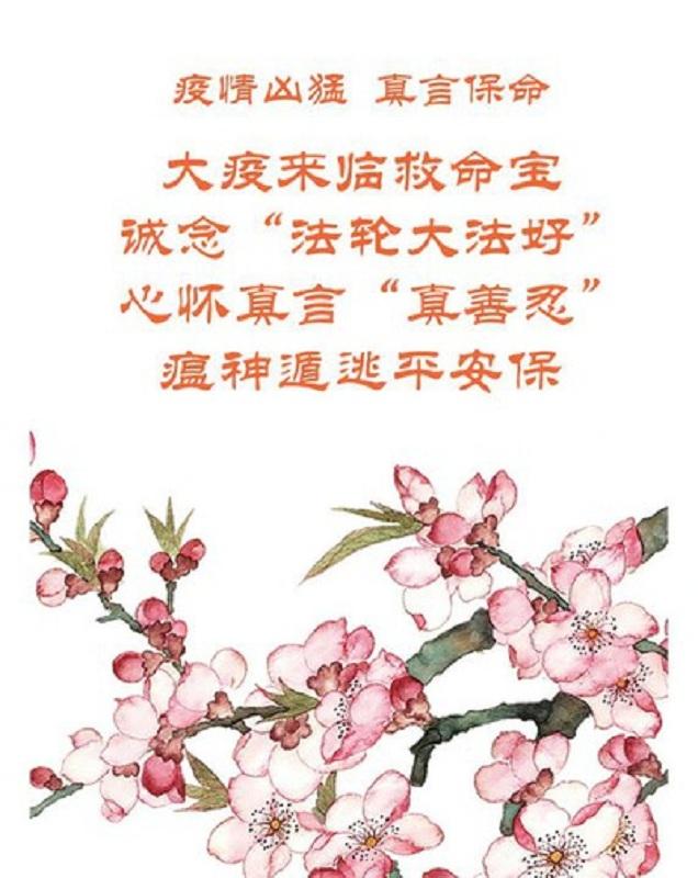 Плакат, розміщений Сунем, з написаними на ньому фразами: «Фалунь Дафа несе добро» і «Істина, Доброта, Терпіння — праведні принципи»